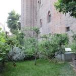 Palazzo Madama gardens